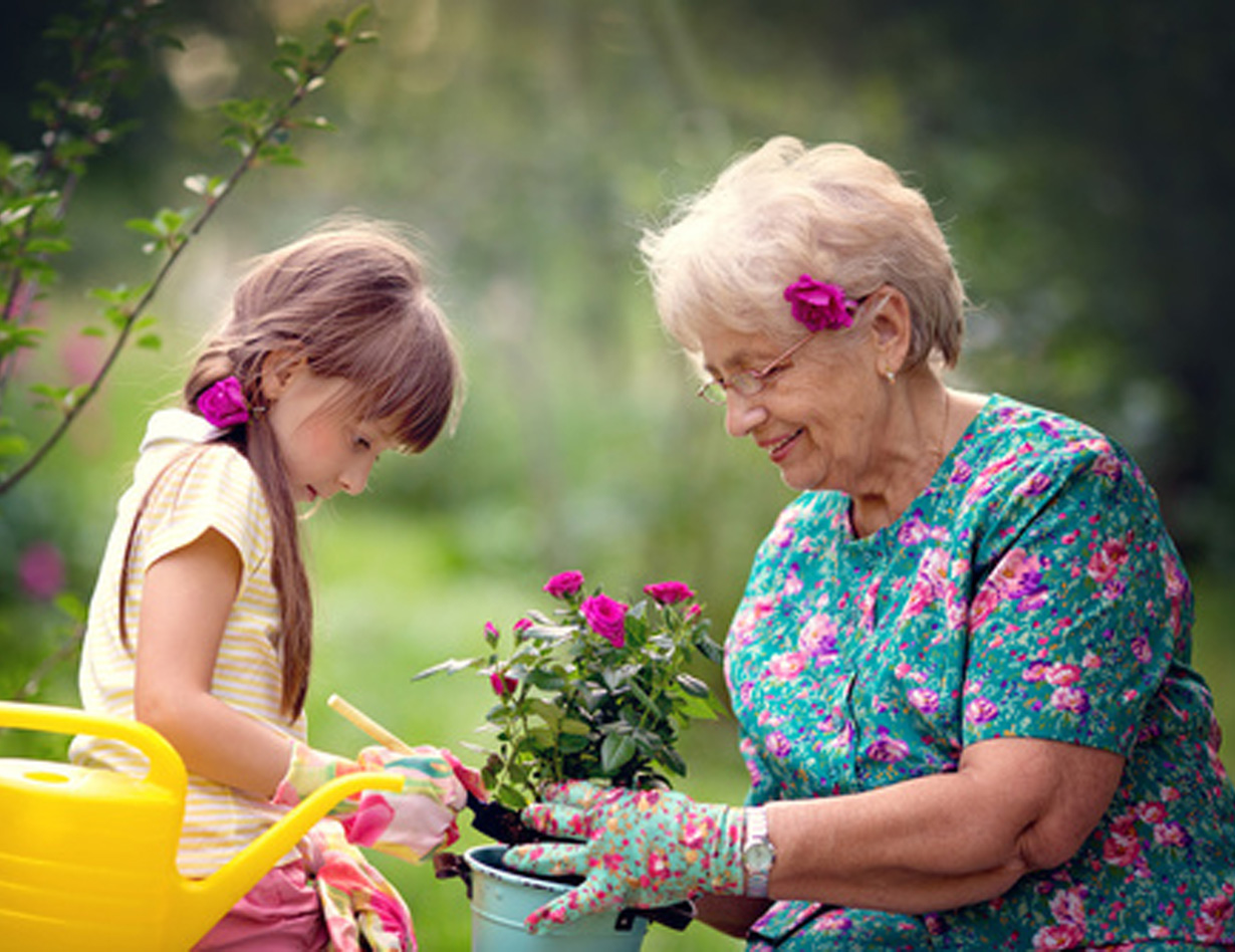 Gärtnerfreuden im Sonnen-Garten